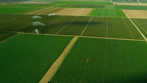 buy Farm Land Property In Bulgaria