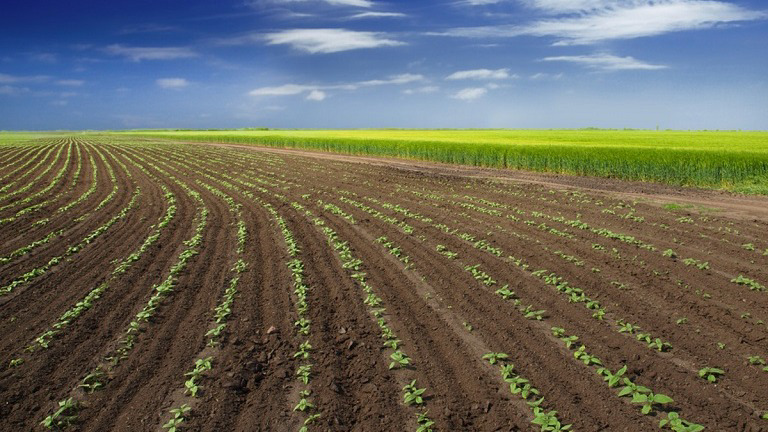 Eco-friendly herbicide and pesticide company in the USA