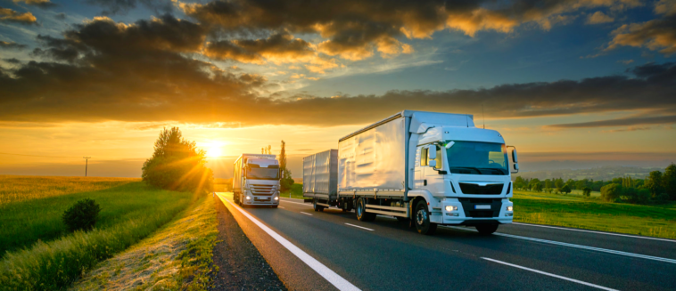 Logistics and transport ERP software