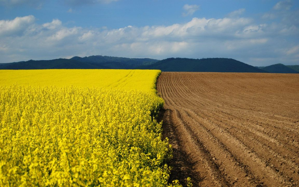 buy agricultural land in Kyiv