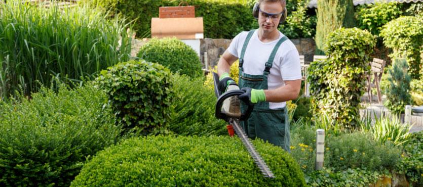Landscape Maintenance Company Accounts In USA