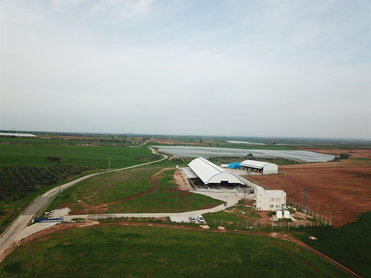 Commercial Modern and New Breeding Farm In Turkey