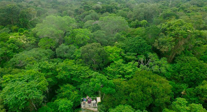 117 acres rainforest in Peru