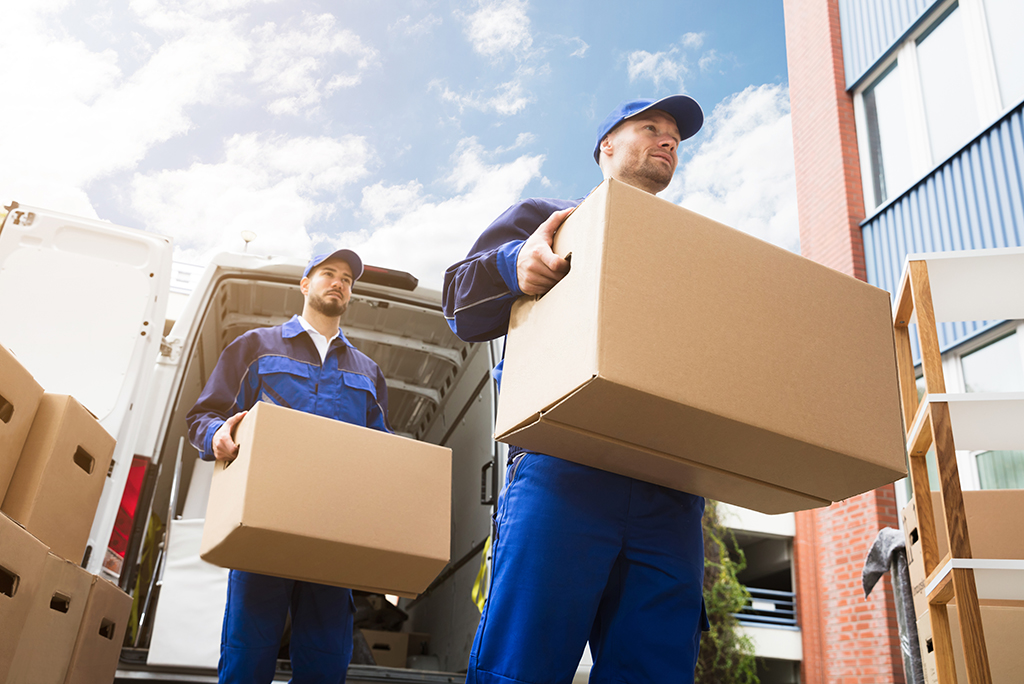 Household Furniture Moving Business In Canada