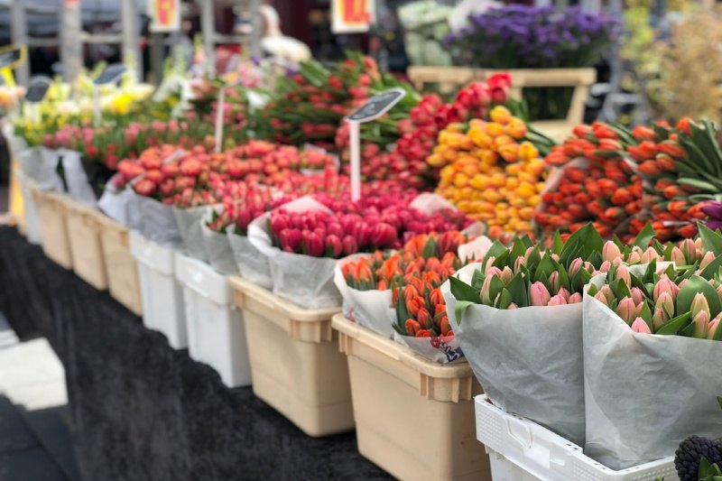 Money-making flower shops and family home in Ontario