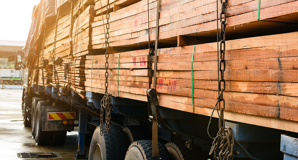 buy wood processing and ground logistics company