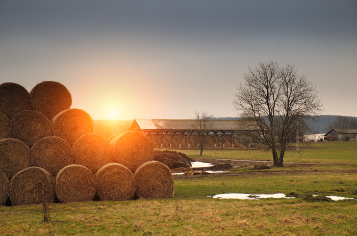 Rural and agricultural property website in Ireland
